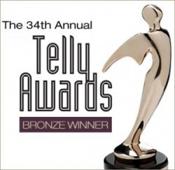 Telly-Awards-2013